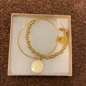 Gold Winter Alex and Ani Set